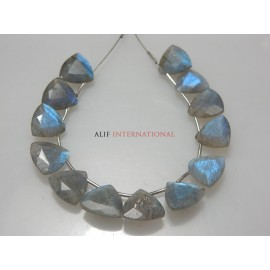 Labradorite Trillion Cut Stone Beads Gemstone
